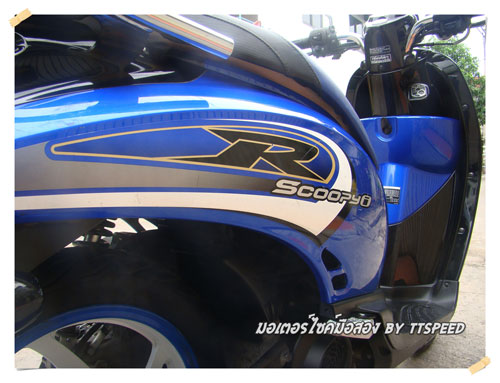Scoopy-Blue-S- (10)