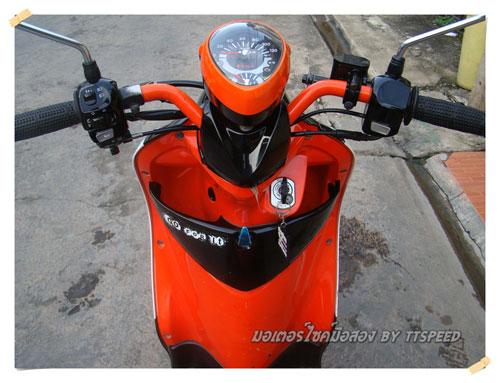 Fino-Orange-S- (13)