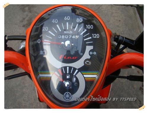 Fino-Orange-S- (15)
