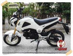 Honda MSX 125 สีขาวเครื่องเดิมพร้อมขี่ใช้งาน ผ่อนเดือนละ 1650 บาท